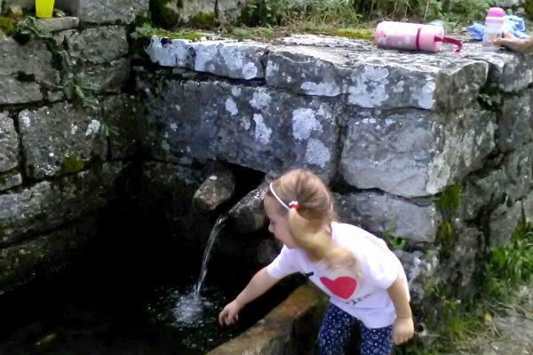Fontana acqua del monte
